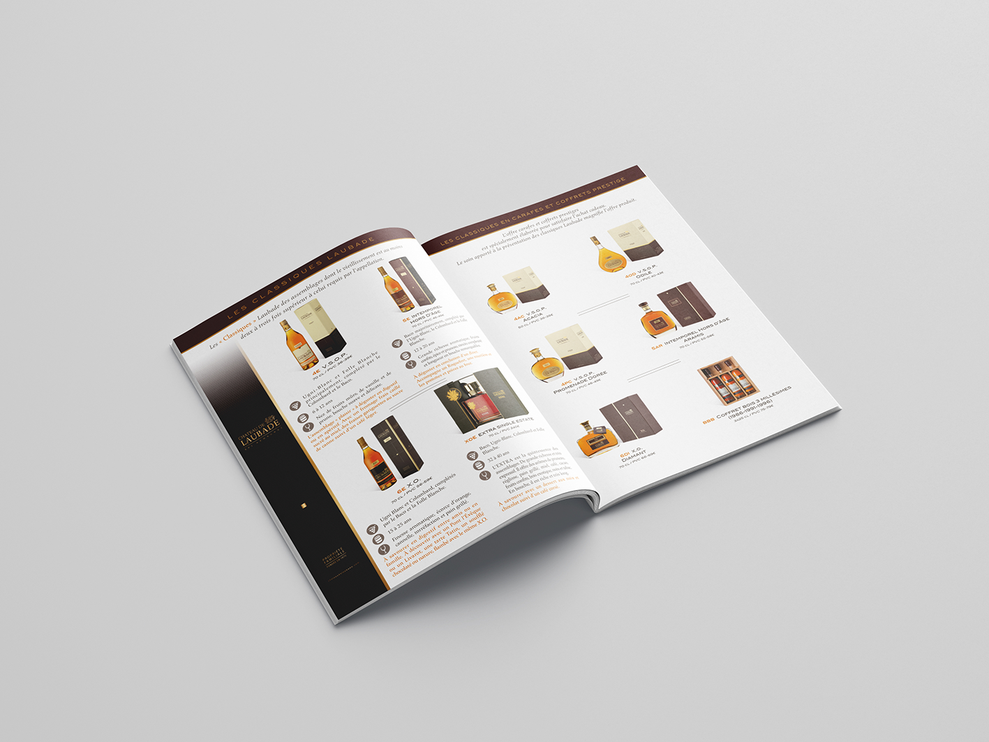 Brochure Leda