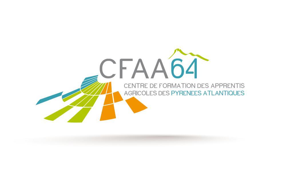 Logo CFAA 64